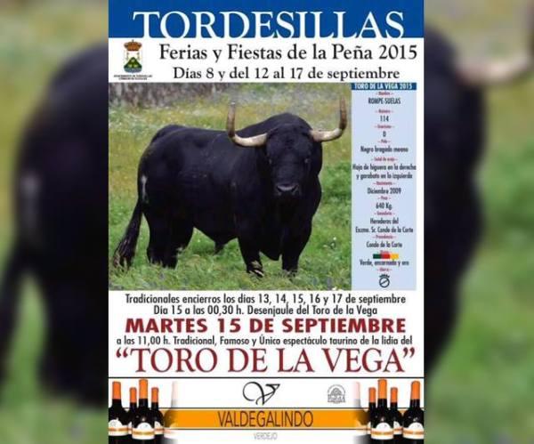 rompesuelas-toro-de-la-vega-2015