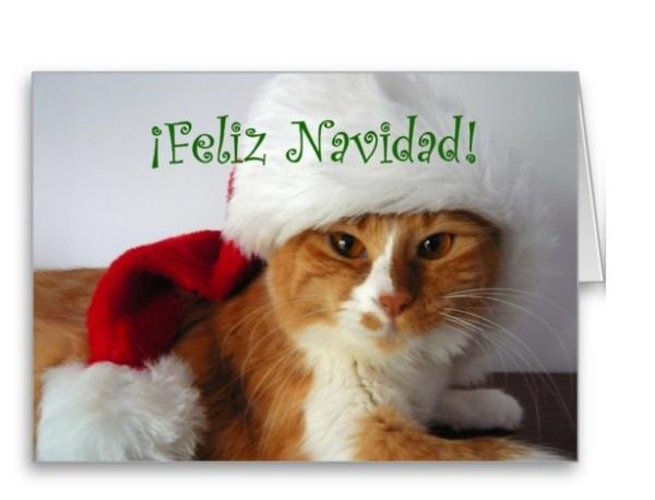 postales-de-animales-para-navidad-2015-gato