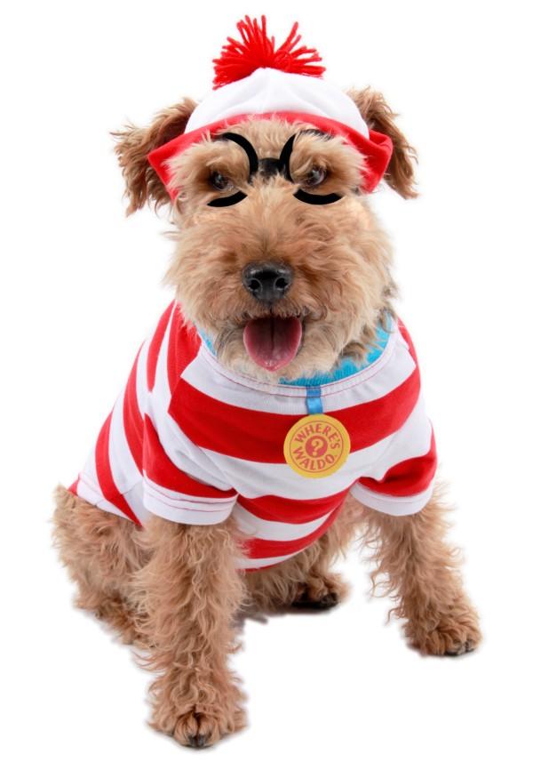 disfraces-para-perros-carnaval-2016-disfraz-de-wally