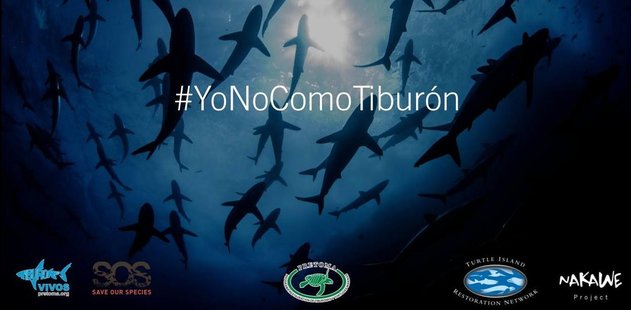 Apoyamos la campaña Yo no como tiburón