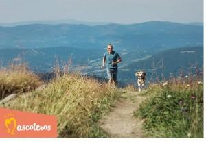vacaciones perros montaña
