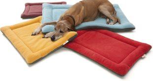 camas-y-sofas-para-mascotas
